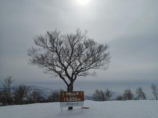 野沢温泉スキー場、